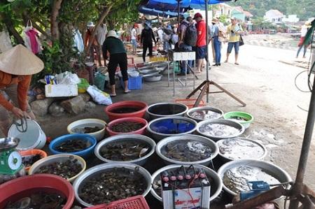Một góc chợ hải sản tại Cù Lao Chàm.