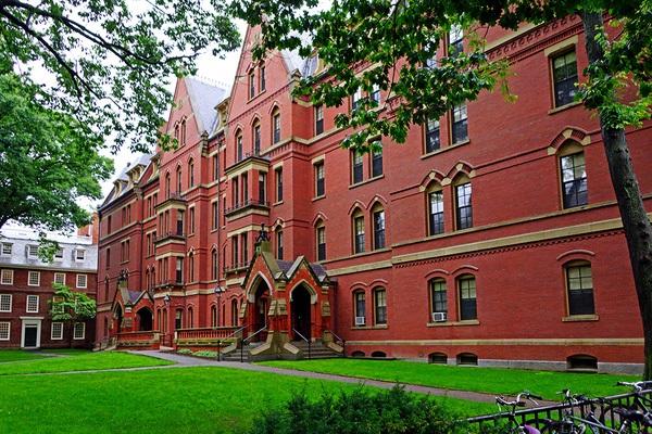 Harvard xếp thứ 3.
