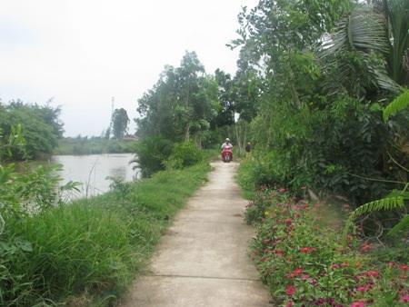 Một tuyến đường ở xã Phong Thạnh A, huyện Giá Rai hàng chục năm nay vẫn chưa có lưới điện sử dụng.