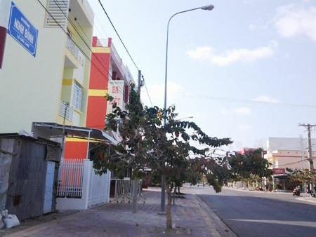 Đường Ninh Bình ở Bạc Liêu.