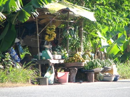 ...để bán cho khách với đủ loại đặc sản là cây nhà lá vườn.