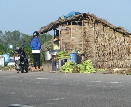 Bán bắp (ngô) ăn liền tại chỗ cho khách phương xa. Khách cũng có thể mua bắp tươi mang về nhà.