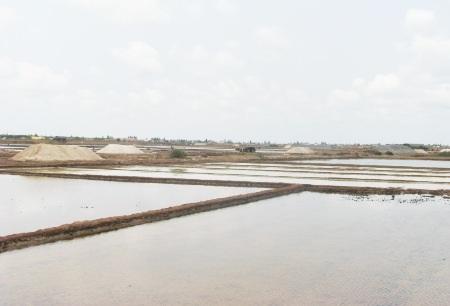 Ruộng muối ở huyện Đông Hải, Bạc Liêu. (Ảnh chụp ngày 20/3).