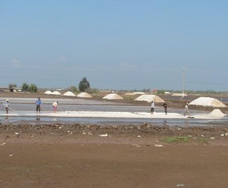 Muối mất giá gặp mưa trái mùa, diêm dân lao đao