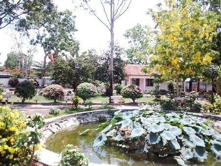 Khung cảnh bên trong khuôn viên Phủ thờ với nhiều cây cỏ lá hoa.