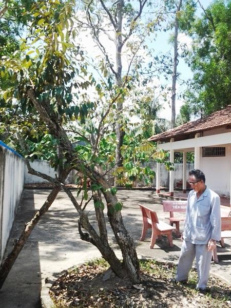 Thăm Phủ thờ Bác nơi đất mũi Cà Mau