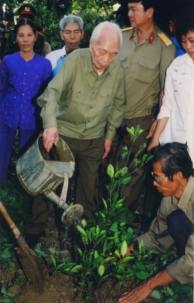 Lần về thăm quê, Đại tướng đã trồng một cây chanh trong vườn nhà ở Lộc Thủy.