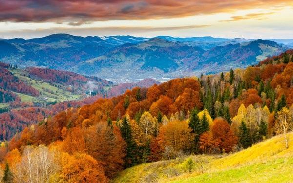 Mang sắc màu mùa thu lên màn hình máy tính với bộ hình nền tuyệt đẹp - 17
