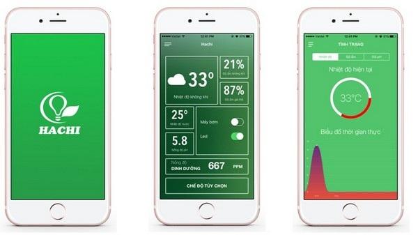 Giao diện của ứng dụng Hachi trên smartphone