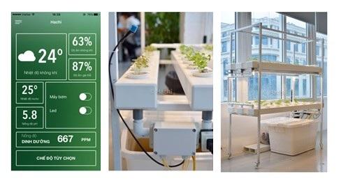 Bộ sản phẩm của Hachi bao gồm ứng dụng di động, thiết bị phần cứng IoT và hệ thống thủy canh thông minh sử dụng đèn LED