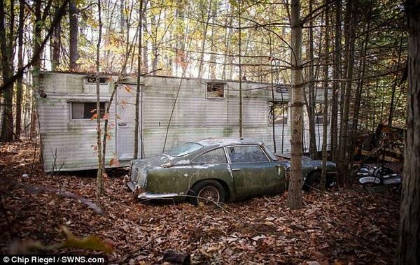 Chiếc xe là biểu tượng một thời của Aston Martin gỉ sét nằm giữa đám lá cây.
