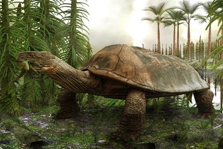 25 sinh vật cổ đại gây nguy hiểm đến nhân loại nếu tồn tại (P2)