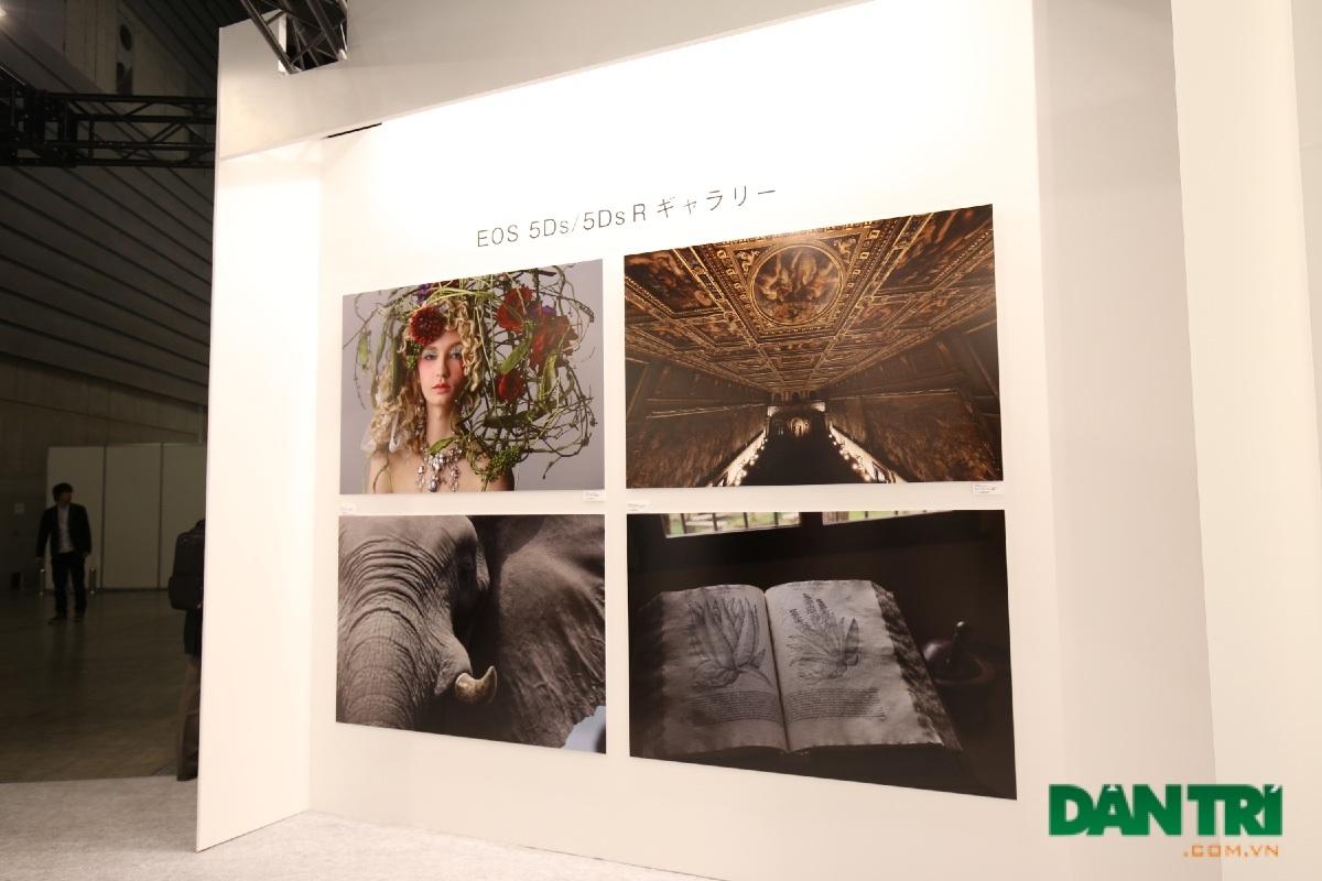 Khu gallery của Canon với nhiều bức ảnh đầy ấn tượng