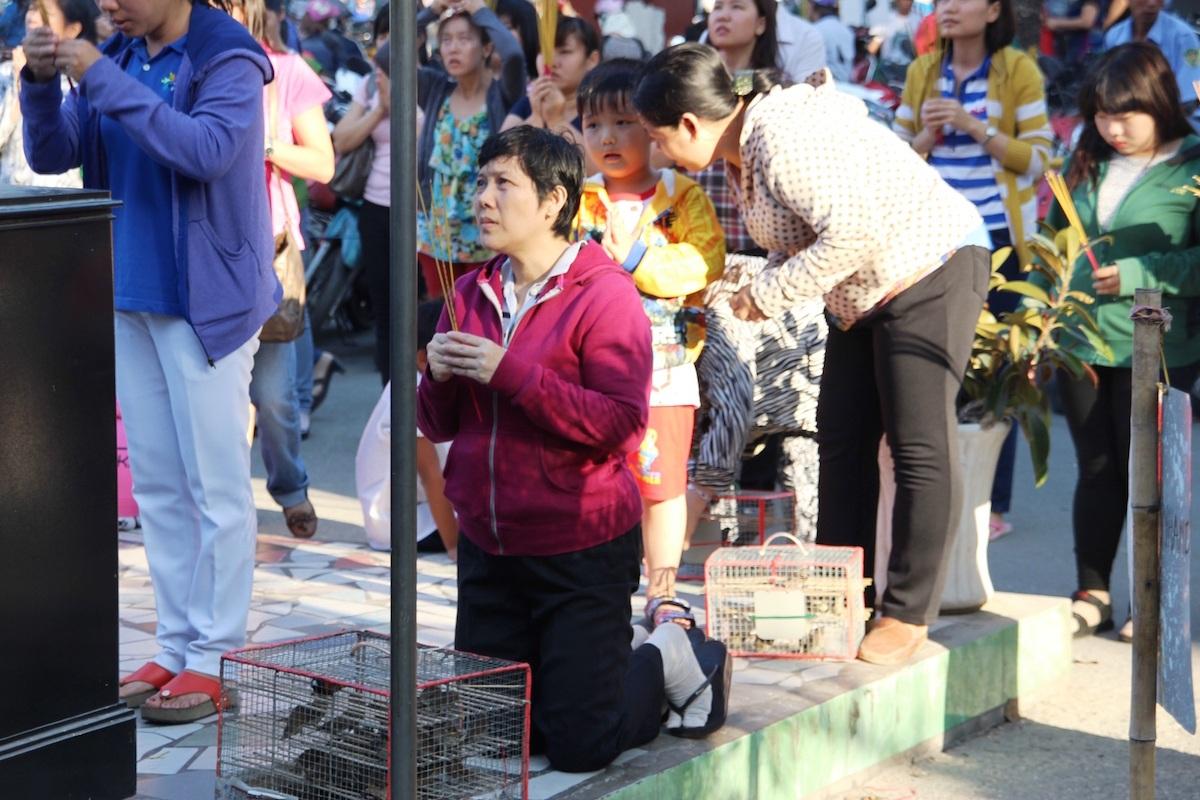 Nhiều người dân làm lễ phóng sinh ngày Rằm tháng Giêng.