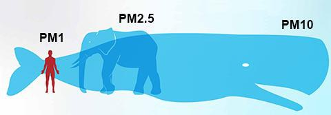 Bụi không khí: Kích cỡ càng nhỏ, tác hại càng to - 3