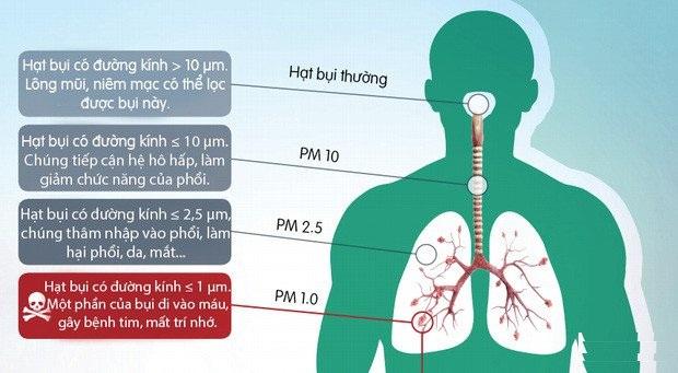Mức độ xâm nhập của bụi vào cơ thể