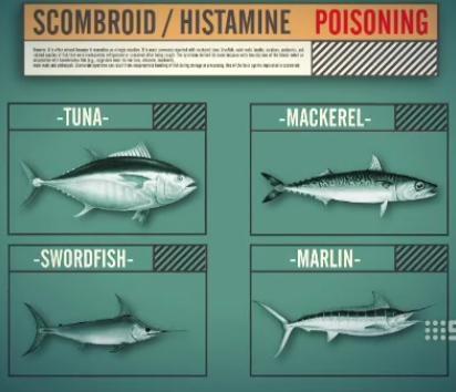 Histamine: Chất sinh học, gây dị ứng và nhiễm độc? - 6