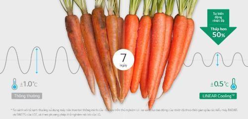 Thử nghiệm thực tế cho thấy, sau 7 ngày bảo quản trong tủ lạnh LG Linear Inverter, rau củ vẫn giữ được sự cứng cáp, độ tươi và màu sắc như ban đầu