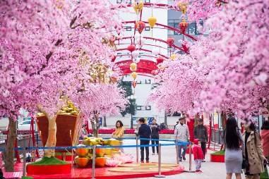 Tại Vincom Mega Mall Times City (Hà Nội), mọi người sẽ được thoải mái bên nhau dạo chơi, lưu lại những hình ảnh Tết hân hoan trên con đường hoa đào ven hồ nhạc nước lãng mạn.