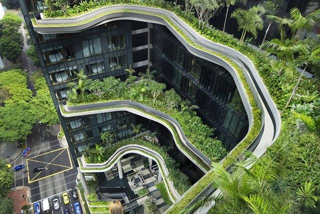 Singapore đang là biểu tượng của sự xanh- sạch – đẹp