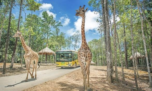 Với Vinpearl Land Gia Lâm du khách sẽ khám phá thế giới tự nhiên trên xe lội nước hiện đại thay vì đi ô tô như tại Vinpearl Land Phú Quốc