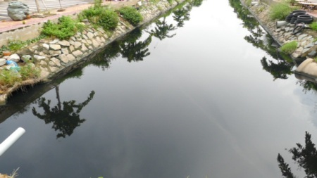 ...đã tạo nên nước đen ngòm, gây ô nhiễm nghiêm trọng do dòng kênh này.