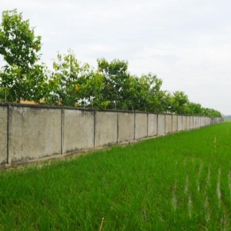 Công trình được bao bọc bởi bức tường cao khoảng 2m.