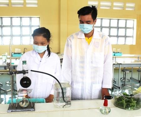 Các học sinh đang thực nghiệm đề tài Thuốc trừ sâu sinh học.