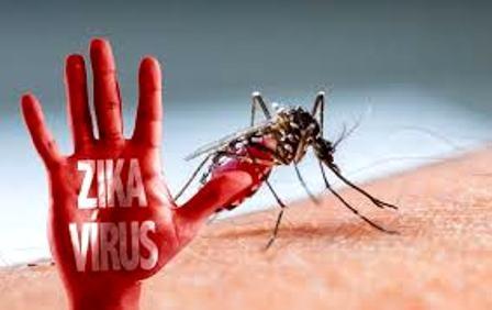 Số người mắc Zika trên địa bàn thành phố mỗi ngày một tăng cao (ảnh minh họa)