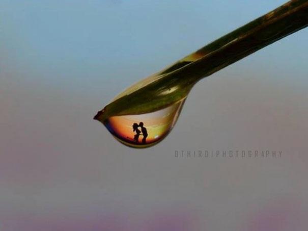 Khoảnh khắc cuộc sống lãng mạn ghi lại qua một giọt nước