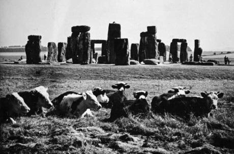 Hình ảnh xung quanh bãi đá Stonehenge nổi tiếng. Ảnh chụp năm 1965.