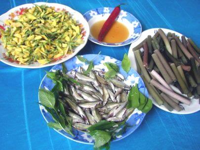 Món cá linh - đặc sản của vùng đồng bằng sông Cửu Long mùa nước nổi