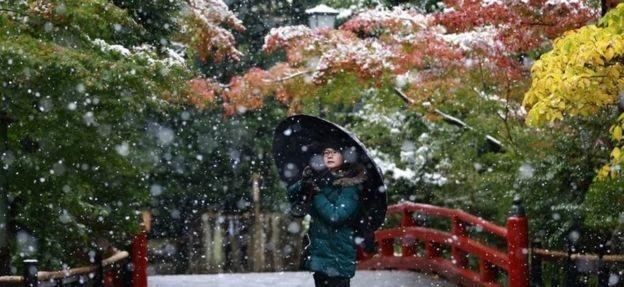 Tuyết rơi xen lẫn màu lá đỏ vàng đang chuyển mùa