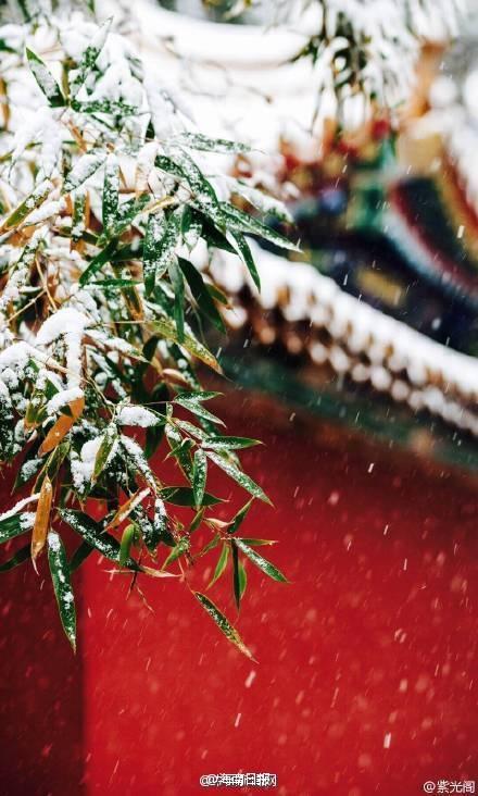 Khung cảnh lãng mạn dưới tuyết rơi