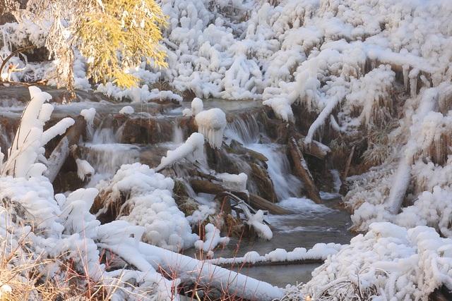 Hồ nước cũng đóng băng