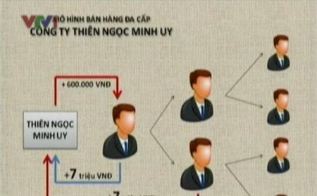 Mô hình bán hàng đa cấp của công ty Thiên Ngọc Minh Uy (theo VTV)