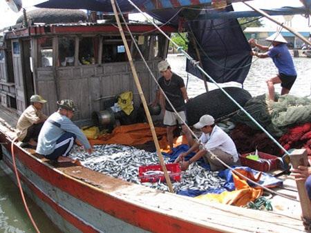 Cùng Dân trí đồng hành cùng tàu ngư dân ra khơi