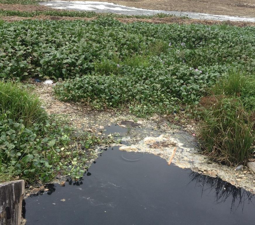 Bắt quả tang trạm xử lý nước thải khu công nghiệp xả thải ra môi trường - 3