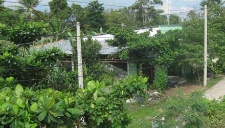 Đất vườn trong quy hoạch dự án đều phải bỏ hoang. Ảnh: Thanh Hải
