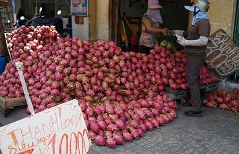 Trái cây Việt bị rẻ rúng ở nước ngoài