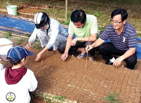 Vườn ươm cây sâm Ngọc Linh được di thực sang huyện Tây Giang, Quảng Nam