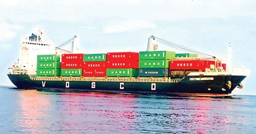 Hàng loạt ngân hàng đang chìm ngập trong đống nợ xấu từ các khoản cho DN vận tải biển vay mua tàu.