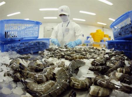 Thuế CBPG với tôm đông lạnh của Việt Nam xuất khẩu sang Mỹ giảm mạnh (Ảnh minh họa)