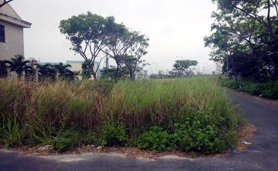Vỉa hè đường Thăng Long trước khu biệt thự nằm sát sông cỏ dại mọc đầy.