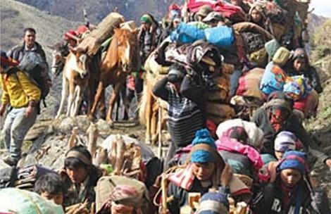 Săn Đông trùng hạ thảo ở Nepal