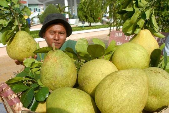 Vương quốc trái cây vào mùa