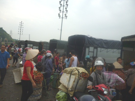 Vải thiều bán buôn tại cửa khẩu quốc tế Lào Cai chỉ có 9.000 đồng/kg