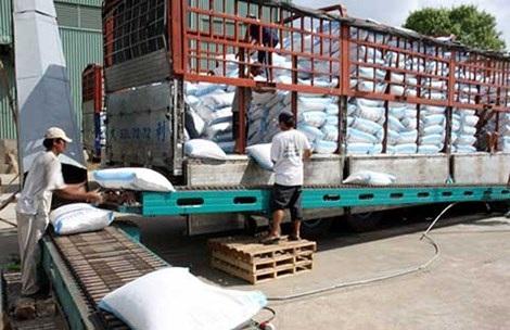 Xuất khẩu gạo sang Trung Quốc như đánh bạc
