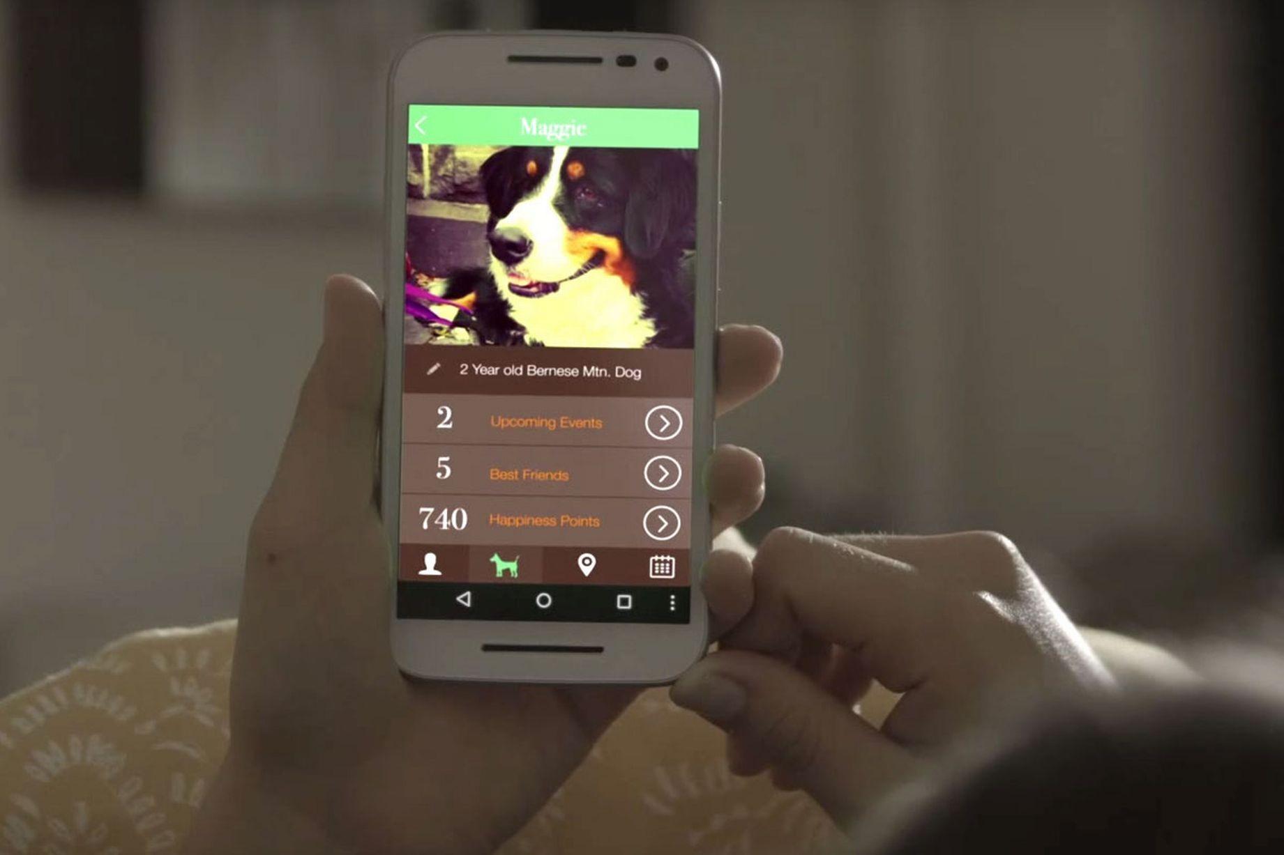 """Độc đáo thiết bị """"đọc"""" tâm trạng của chó cưng - 2"""
