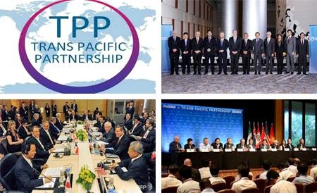 Việt Nam sẽ tiếp tục đẩy nhanh quá trình chuẩn bị trong nước để chuẩn bị cho việc ký kết và phê chuẩn Hiệp định.